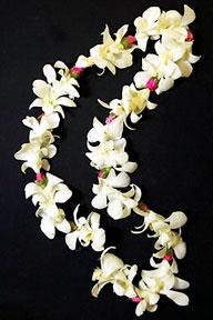 A Hawaii Wedding Hawaiian Flower Lei