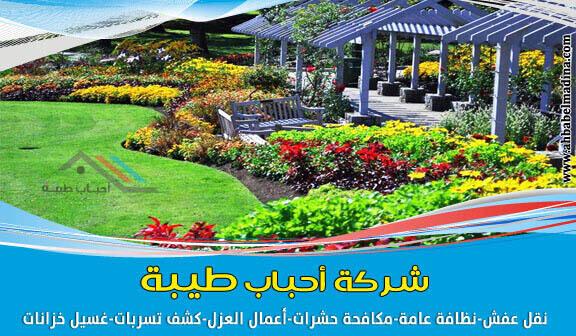 شركة تنسيق حدائق بالمدينة المنورة وتصاميم حدائق منزلية
