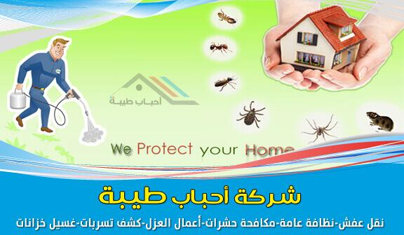 Photo of شركة مكافحة الحشرات بجدة مع الضّمان وخصم 22%
