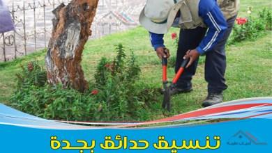 صورة شركة تنسيق حدائق بجدة 0568252391 & وأفضل تصميم حدائق منزلية