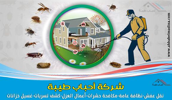 Photo of شركة مكافحة حشرات بالقصيم وبريدة وعنيزة + الرس والبكيرية