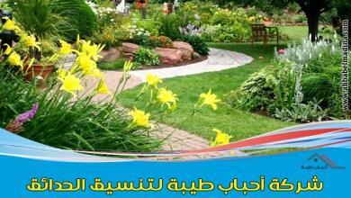 صورة شركة تنسيق حدائق بالجبيل وتزيين وتصميم الحدائق المنزلية