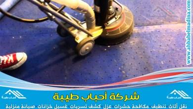 Photo of شركة تنظيف موكيت بالهفوف