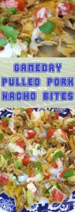 Gameday Pulled Pork Nacho Bites