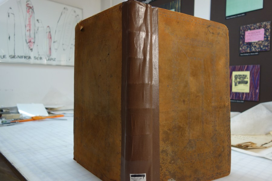 The British Herbal book spine before restoration work.