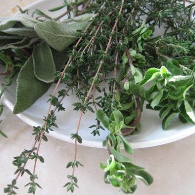 List of Some Health Benefits of Herbs