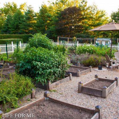 Fall Garden Planting To Do List