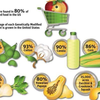 What are GMO's?