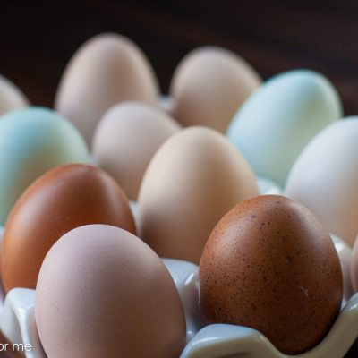 Which Eggs Should You be Eating?