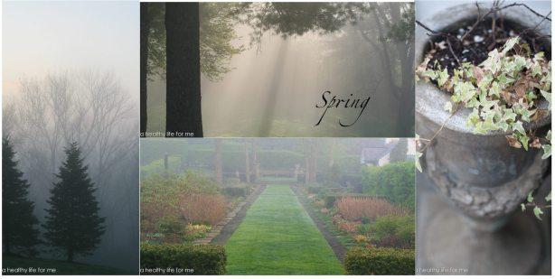 Spring Garden 12-1