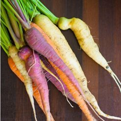 Tips for Growing Carrots and Honey Roasted Carrot Recipe