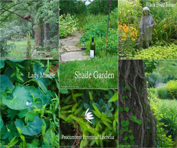Beth Karp Shade Garden