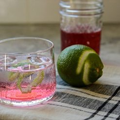 Cranberry Vodka Spritzer made with Cranberry Simple Syrup