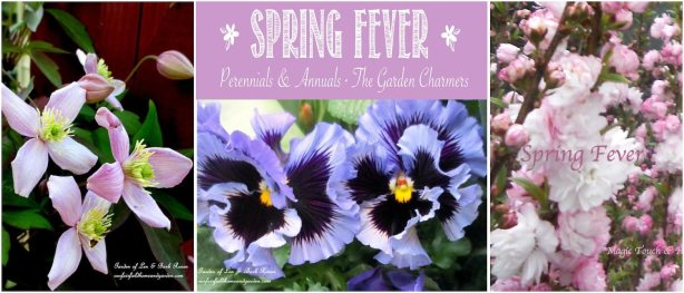Spring Fever in the Garden