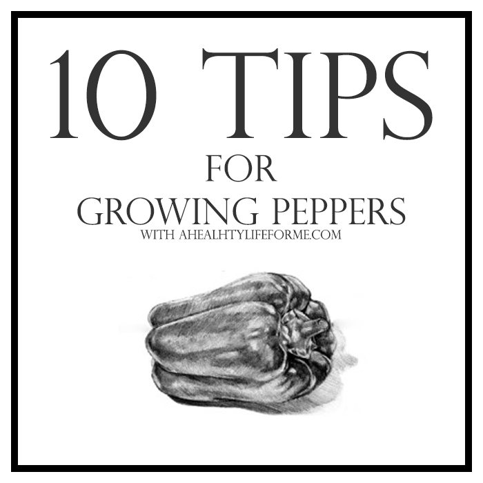 10 Tips for Growing Peppers | ahealthylifeforme.com