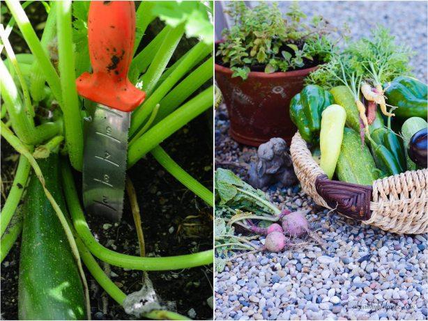Hori-Hori Gardening tool you will love | ahealthylifeforme.com