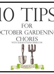 10 Tips for October Gardening | ahealthylifeforme.com