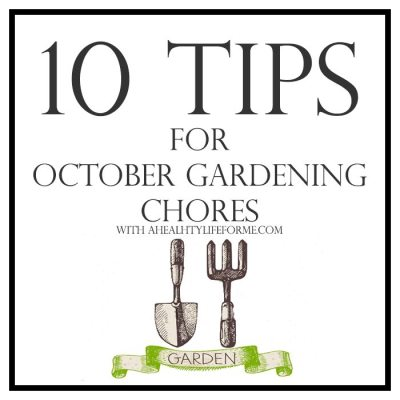 10 Tips for October Gardening
