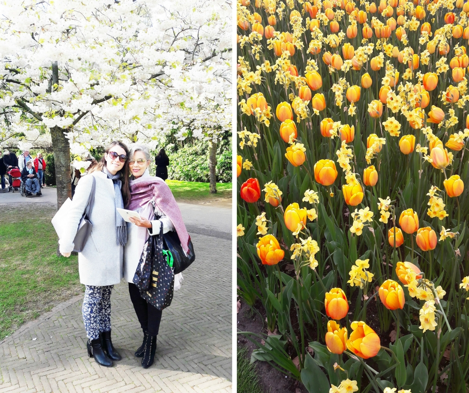 Seeing the tulips in Holland has been on our bucketlist for years and we just got back from making our dream of seeing them a reality. Such a beautiful experience! | ahedgehoginthekitchen.com