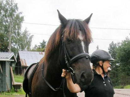 Sis and her horse