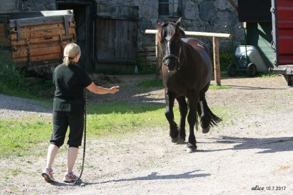 My sister and her horse IMG_5702C