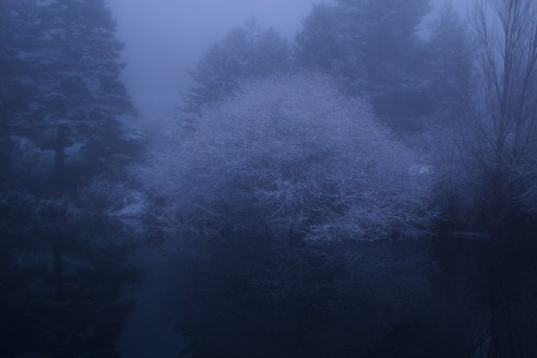 Fantasía de invierno #7