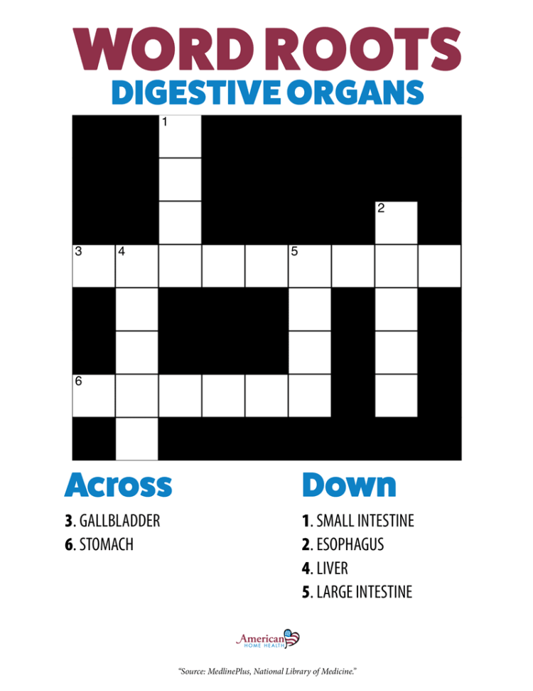 Word Roots Digestive Organs - Crossword Puzzle