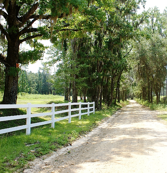 Old St. Augustine Road
