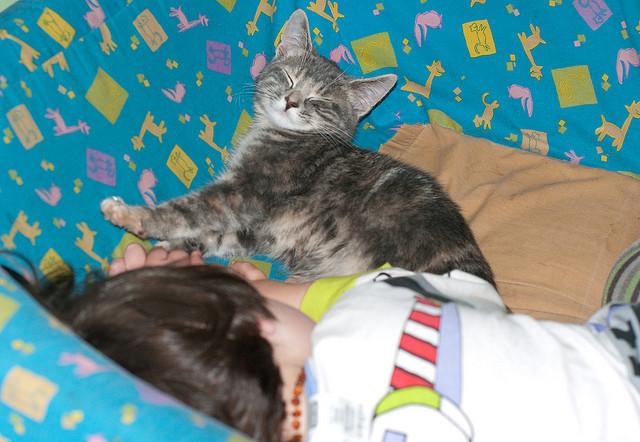 Nala sleeping with Khéna