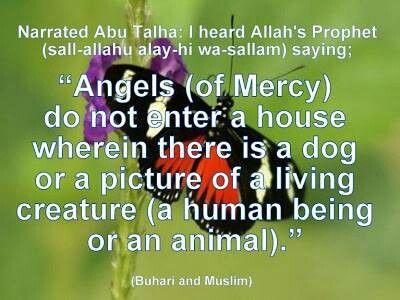 Afbeeldingsresultaat voor dogs in islam