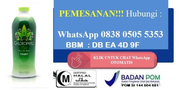pesan klorofil di Langsa Aceh