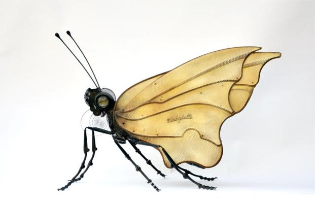 Butterfly by Edouard Martinet (Photo by Edouard Martiniet/CATERS NEWS)