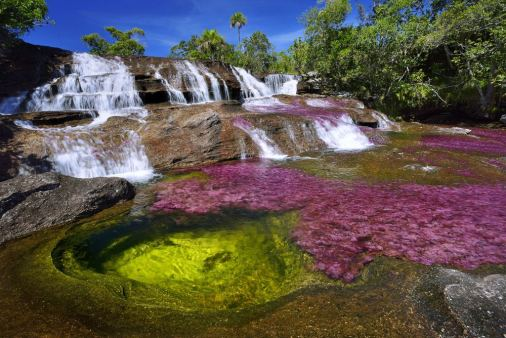 A waterfall is seen at the end of the rainy season in August, when the water level finally decreases on the Cano Cristales river in Colombia. The water becomes covered with a bright pink aquatic plant, Macarenia Clavigera. (Photograph by Olivier Grunewald)