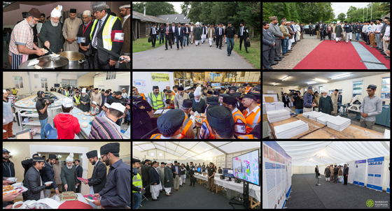 03_inspection of jalsa salana uk