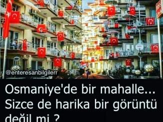 KÜÇÜK KUMLA MARSAS SİTESİ