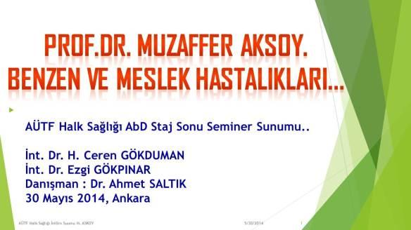 Muzaffer_Aksoy_Benzen_ve_Losemi
