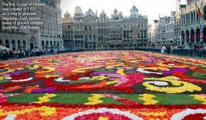 Brüksel, çiçekli-1