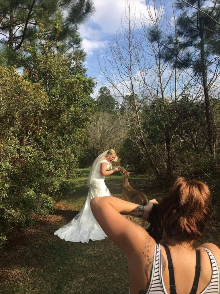 kisatchie butterfly garden deer bentley louisiana la bridals wedding photographer ahnvee photography