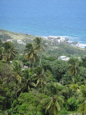 Barbados - Blick ins Tal