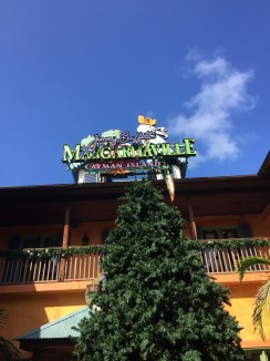 Margaritaville Grand Cayman - Vorweihnachtszeit mit Tannenbaum