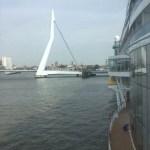 Aidaperla und die Erasmusbrücke von Rotterdam