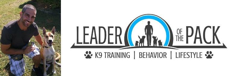 Leaderofthepack