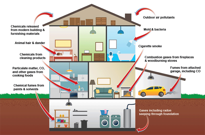 keeping a healthy home