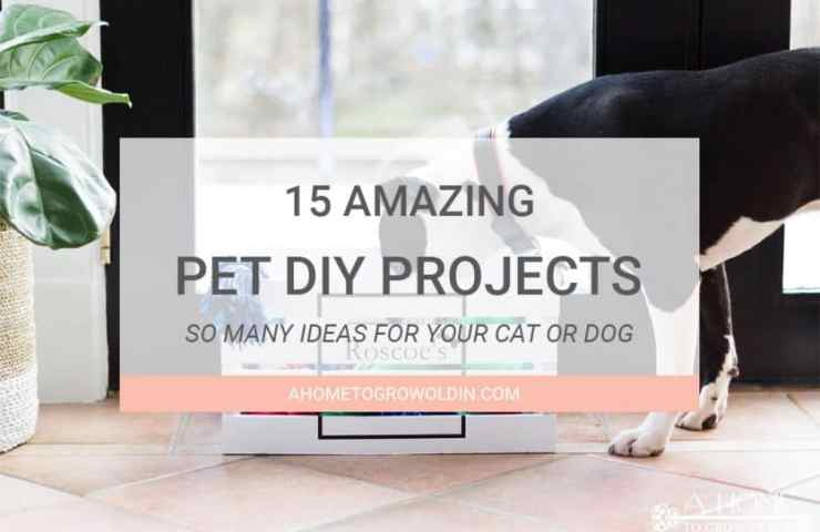 15 Amazing Pet DIY Projects for Your Cat or Dog