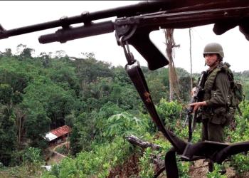 En esta imagen de archivo, policía antinarcóticos monta guardia en un campo de coca cerca de La Gabarra, en la región colombiana de Catatumbo. (AP Foto/Scott Dalton, Archivo)