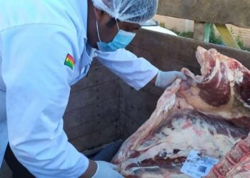 Senasag revisó la carne decomisada y no portaba la documentación correspondiente.