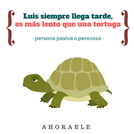 """""""Ser más lento que una tortuga"""""""