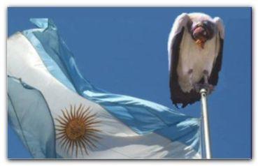 FONDOS BUITRE: El gobierno de Obama explicitó su apoyo a la Argentina