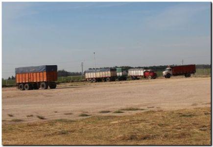 Autorizaron un aumento del 20% para el transporte de cereales, oleaginosas y sus derivados