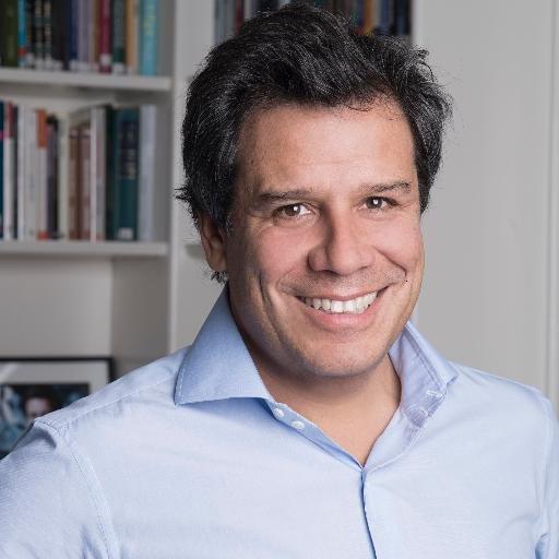 ELECCIONES: La UCR quiere a Manes como candidato